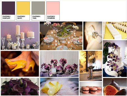 yellow, purple, mood board, edgewater