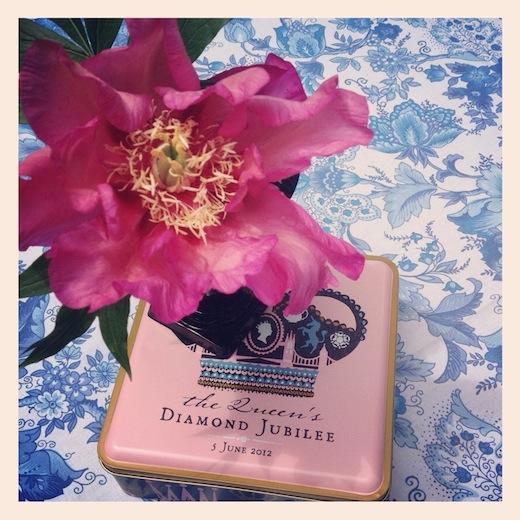 pink tree peony jubilee commemorative tin